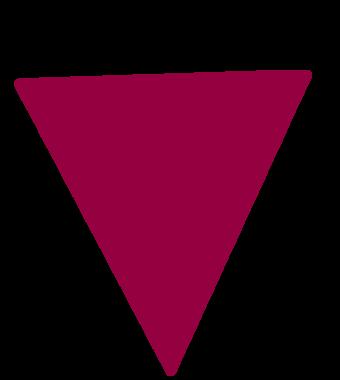 https://www.ribe.bio/wp-content/uploads/2021/02/Triangle_Mirtillo.png