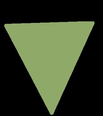 https://www.ribe.bio/wp-content/uploads/2021/02/Triangle_Pistache.png